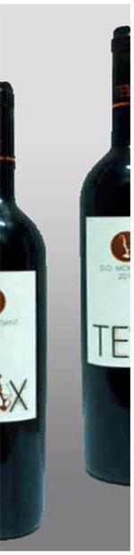 vins-teix